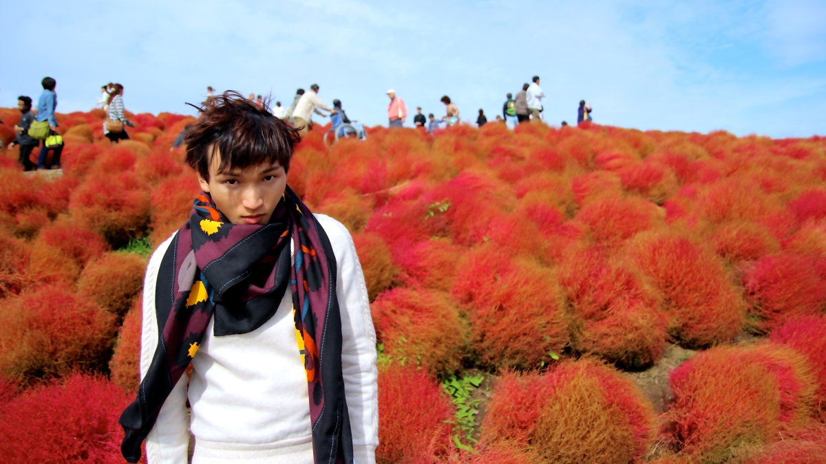 Autumn at Hatachi Seaside Park Ibaraki